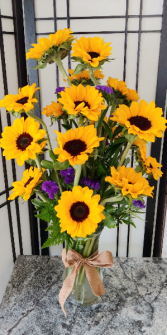 The Love of Sunflowers
