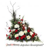 The Nativity Bud & Bloom Signature Arrangement
