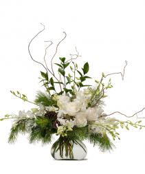 The Pearl & the Pine Vased Arrangement
