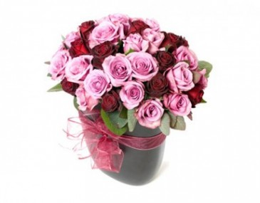 THE PIANO PLAYER SMALL SIZE MIX ROSES