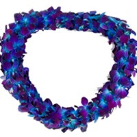 The Rad Grad  Graduation Lei in San Bernardino, CA | Graceful Lily