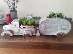 The Road Less Travelled Planter in Plain City, OH | PLAIN CITY FLORIST