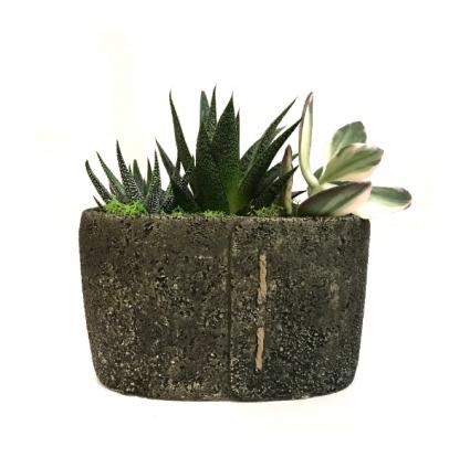The Stitch Succulent Planter