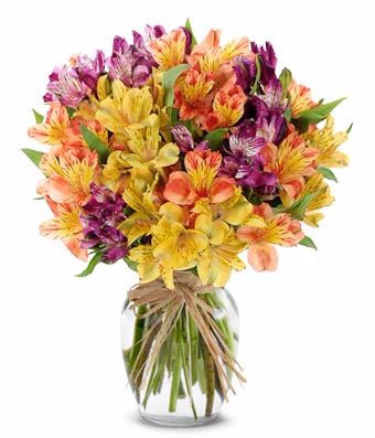 The Sunshine Bouquet get well