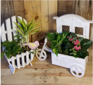 The Wooden Dish Gardens plants in Paris, KY | Chasing Lilies Floral