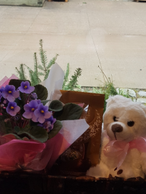 THINKING OF YOU Plant, chocolates and bear