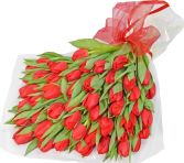 THIRTY RED TULIPS  GIFT WRAP