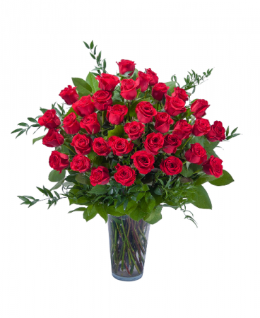 Three Dozen Long Stem Red Roses Premium roses
