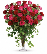 Three Dozen Pink & Red Roses in Large Trumpet vase