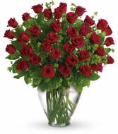 Three Dozen Red Roses!!