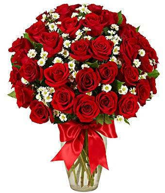 Three Dozen Red Roses Valentine's Day