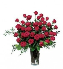 Three Dozen Red Roses Roses