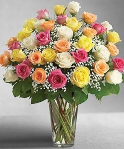 Three dozen Rose Rainbow Assortment Vase