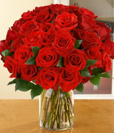 Three Dozen Roses Rose Arrangement