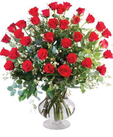 Three Dozen Roses Vase Arrangement