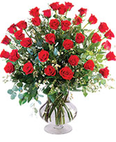 Three Dozen Red Roses Vase Arrangement  in Jacksonville, Florida | St Johns Flower Market