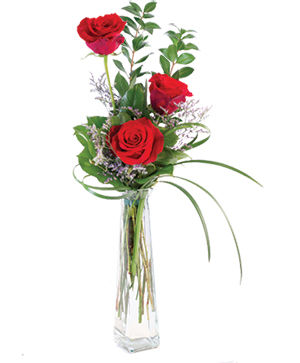 Three Fiery Roses Bud Vase in Chambly, QC | FLEURISTE SMITH BROTHERS FLORIST-JAZZ FLOWERS