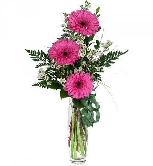 Three Pink Gerbera Daisies Flower Arrangement in Richmond, VT | CRIMSON POPPY FLOWER SHOP