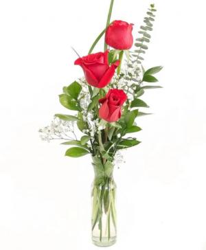 Three Red Roses Flower Arrangement in Richmond, VT | CRIMSON POPPY FLOWER SHOP