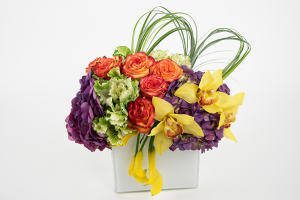 Three Stars Contemporary arrangement  in Falls Church, VA | Geno's Flowers