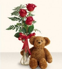 Three Vased Red Roses & Bear
