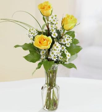 Three Yellow Roses