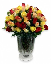 "Grower Direct Thunder Bay's ""Thunder Bundle"" 100 Roses in a Vase"