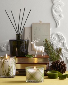 Thymes - Frasier Fir Gift Basket in Toronto, ON | THE NEW LEAF FLOWERS & GIFTS