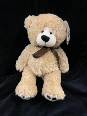 Tickles Teddy Bear in Red Lake, ON | FOREVER GREEN GIFT BOUTIQUE