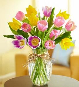 Timeless Mixed Tulips  in Largo, FL | Rose Garden Florist