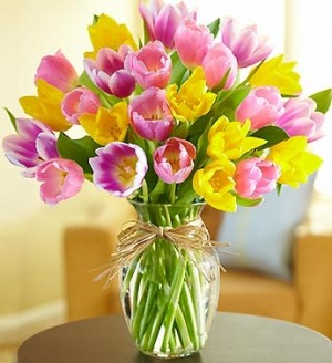 Timeless Tulips  . 3 colors in vase, colors may vary from picture in Gainesville, FL | PRANGE'S FLORIST