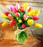 Timeless Tulips Fresh Flowers