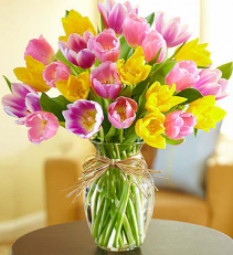 Timeless Tulips. From Roma Florist