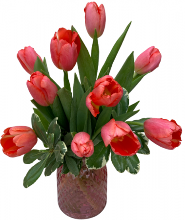 Timeless Tulips Vase Arrangement