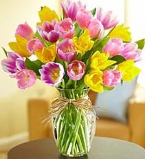 Timeless Tulips vase