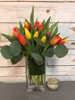 Tiptoe through the Tulips Arrangement in Weymouth, MA | DIERSCH FLOWERS