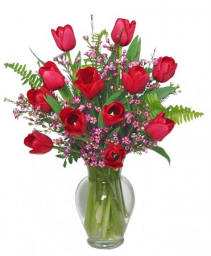 Fancy Tulips  $55.95