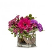 Simply Purple Fresh Flower Arrangement