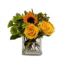 Sunny Limeade Fresh Flower Arrangement