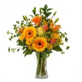 Citrus Spray Fresh Flower Arrangement