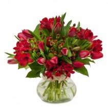 Tulip Supreme Fresh Flower Arrangement