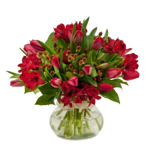 Tulip Supreme Fresh Flower Arrangement