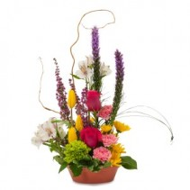Pixie Garden Fresh Flower Arrangement