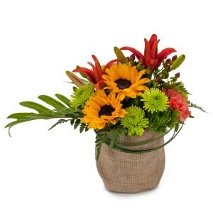 Giddy Up Fresh Flower Arrangement