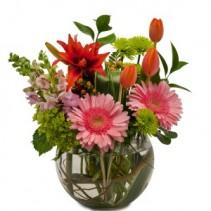 Splendor Surprise Fresh Flower Arrangement