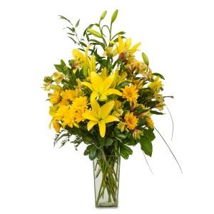 Morning Glory Fresh Flower Arrangement
