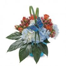 Berries in Blue Fresh Flower Arrangement