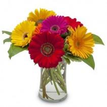 Fruity Fresh Flower Arrangement