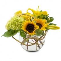 Rays of Sun Fresh Flower Arrangement