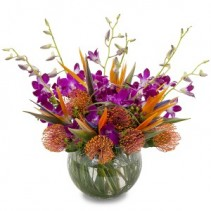 Sangria Fresh Flower Arrangement